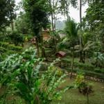 samasati grounds