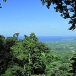 bhakti view