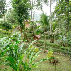 samasati-grounds