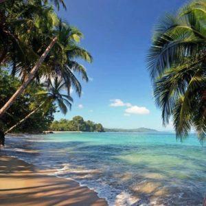 beach-cropped